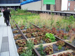 The planners planted all sorts of plants and flowers in the abandoned rail bed.